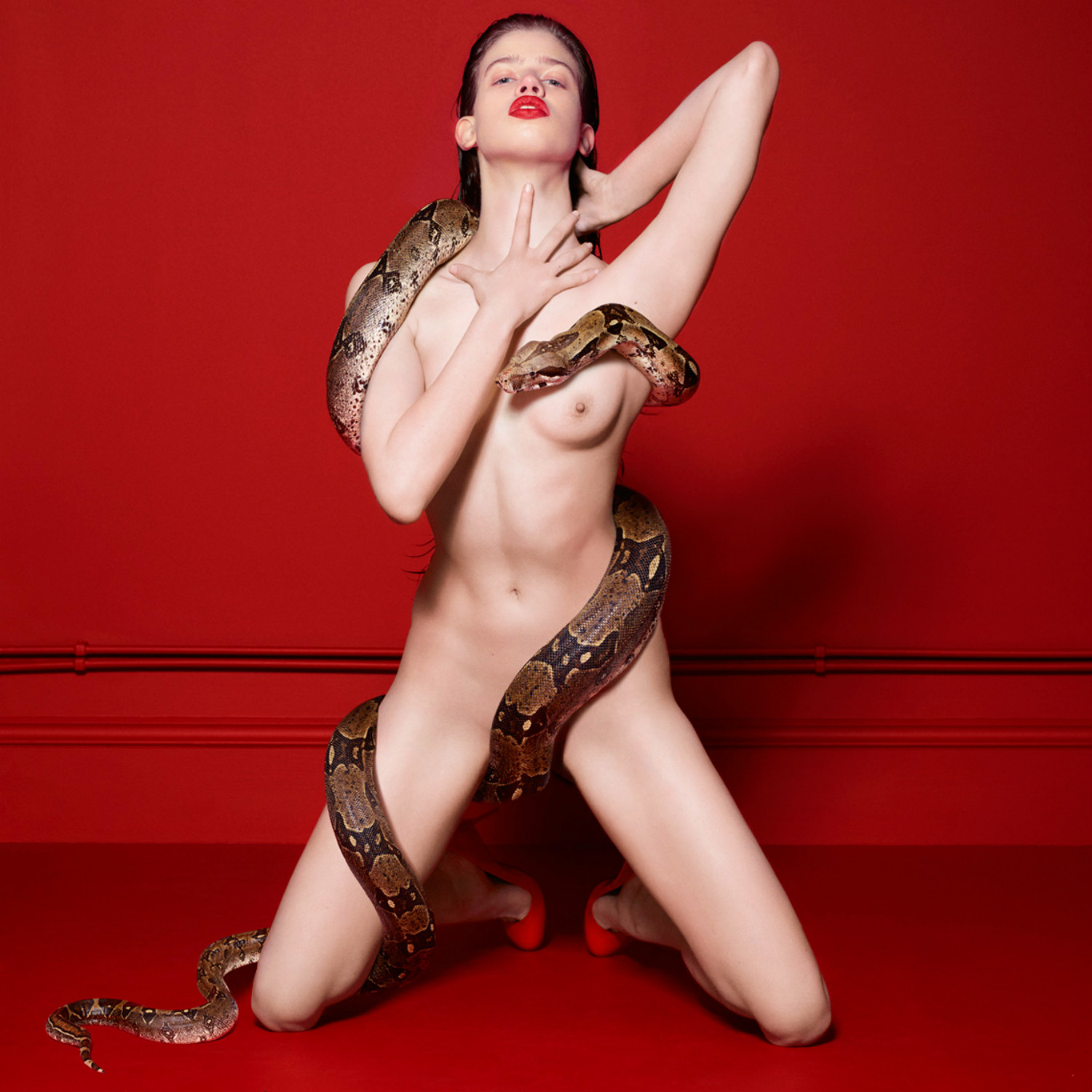 cuneyt akeroglu red room fashion photography erotica mode snake