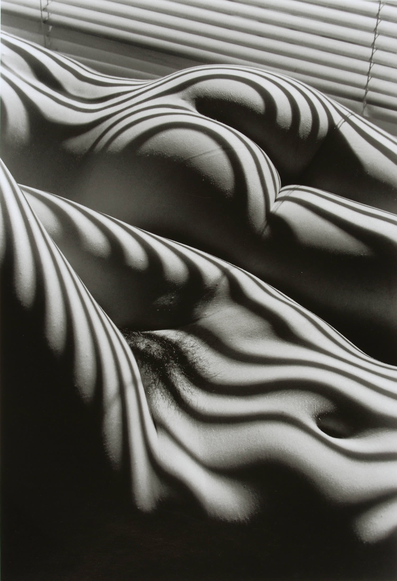 zebra striped nude, photography by lucien clergue